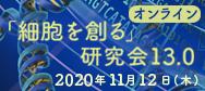 JSCSR 13.0 logo